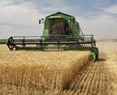 Harvest | English Flashcard for Harvest - LELB Society